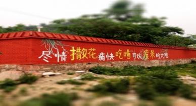 北京M小姐的逃花园
