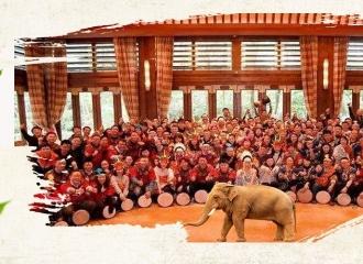 「鼓舞飞扬」-非洲鼓主题团建
